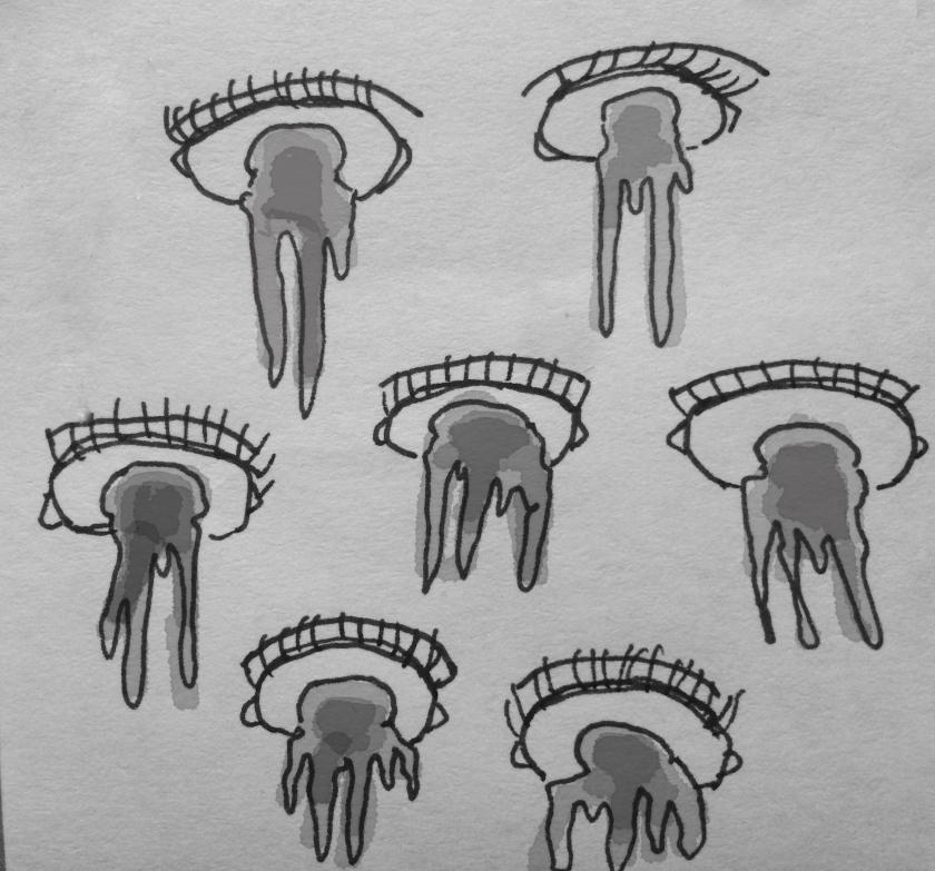 eyedrip2